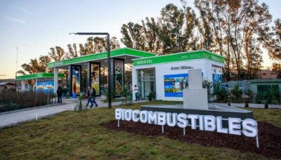 Empresarios de biocombustibles piden cumbre con el gobierno para evitar 3 mil despidos