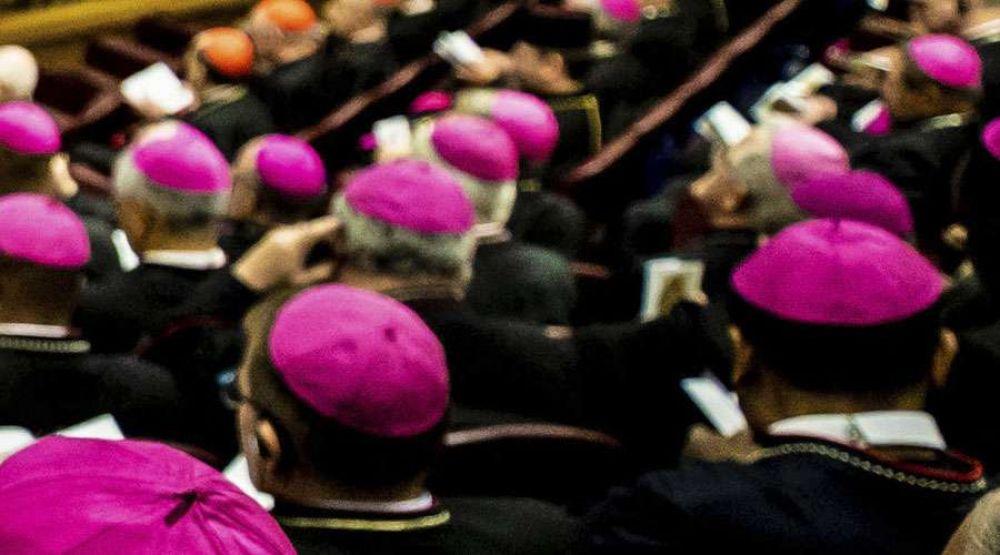 """Rechazan artículos que hablan de una """"conspiración"""" de obispos contra el Papa Francisco"""