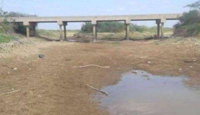 General Lavalle: Sequía extrema genera mortandad de peces en el Canal 2