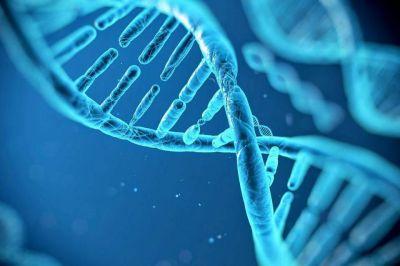 Lucha contra el cáncer: Un estudio genómico permitirá detectarlo antes de que se manifieste