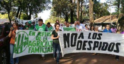 Misiones: trabajadores de Agricultura Familiar, despedidos por el macrismo, piden ser reincorporados