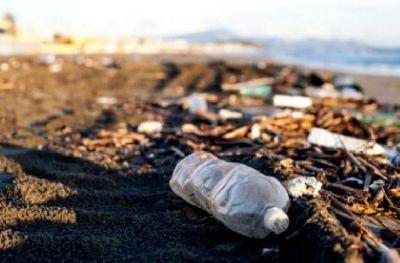 Cerca de 400 voluntarios limpiarán las playas para brindar conciencia sobre espacios costeros