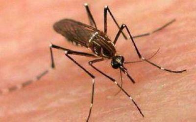 Merlo es el distrito con más casos de Sarampión y Dengue de Buenos Aires ¿y el resto?