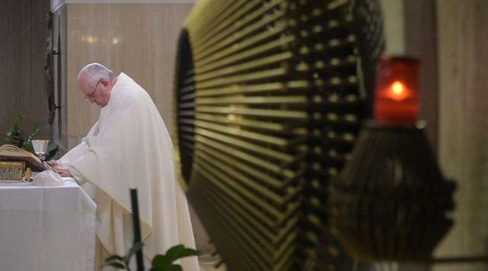 Papa Francisco anima a agradecer y pedir perdón a quienes nos acompañan en la vida