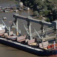 Advierten por la falta de controles de residuos patogénicos en buques que llegan a Rosario