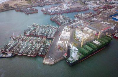 El puerto de Mar del Plata tiene previsto recibir más cruceros en los próximos meses