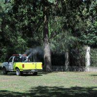 El Municipio avanza con una nueva etapa de fumigaciones en distintos espacios de la ciudad
