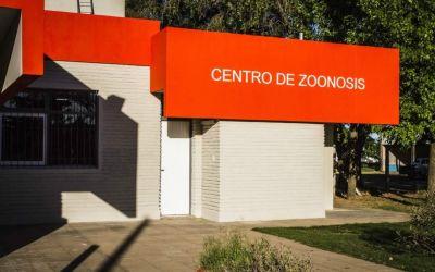 """Dengue: """"No existe ningún caso sospechoso en Trenque Lauquen"""""""