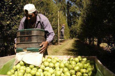 Uatre acusó a empleadores de Rio Negro y Neuquén de no pagar aportes y retenciones