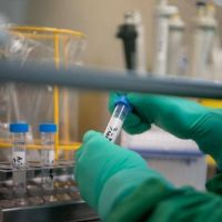 Todo listo para los primeros testeos de una vacuna contra el coronavirus