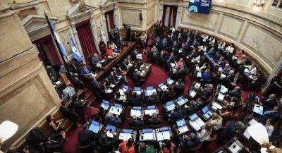 Senado: la grieta por el aborto se coló en el debate por la designación de Marisa Graham como defensora del Niño