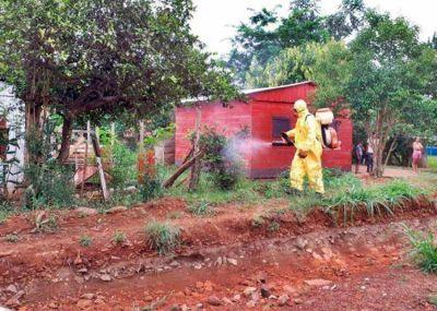"""Misiones pelea """"codo a codo"""" contra el dengue"""