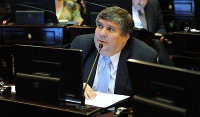 """Para el jefe de los senadores oficialistas, si se legaliza el aborto """"el Estado está autorizando a matar a una persona"""""""