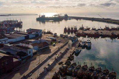 Pesca: Habrá baja segmentada de retenciones