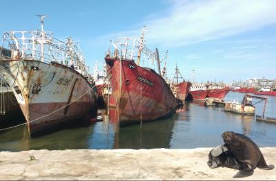 Puerto: