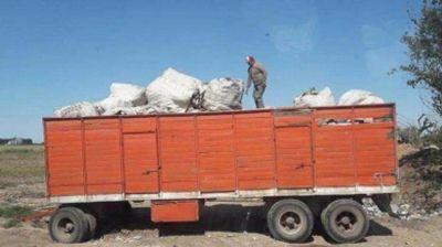 Chabás logró bajar los volúmenes de basura apostando al reciclaje