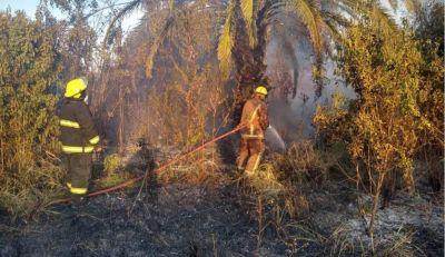 Un vecino quemaba basura y las llamas se expandieron