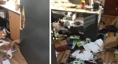 Intervención acotada en el Surrbac y robo con destrozos en la sede sindical