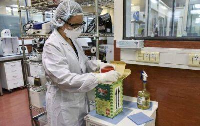 Coronavirus: capacitaciones del Malbrán para todo el país