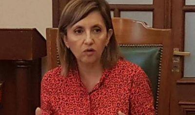La intendente Fuentes advirtió que quienes generan mini basurales por podas y escombros serán multados