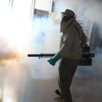 Continúa la lucha contra el dengue en Posadas