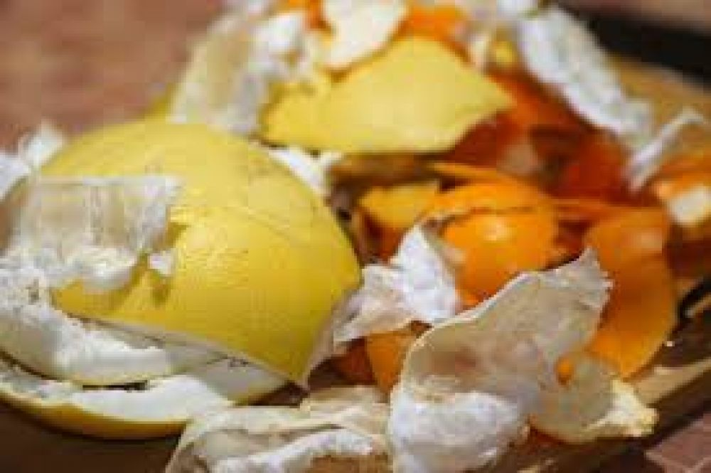 Virasoro estableció tres días para el retiro de basura orgánica