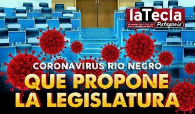 Coronavirus: qué propone la Legislatura