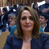 Ricci pide la baja de impuestos provinciales para las PYMES santacruceñas