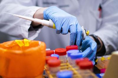 Coronavirus: la Argentina, elegida por la OMS como uno de los diez países que buscarán la cura