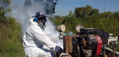 En las últimas 48 horas crecieron un 30% los casos de dengue en la Ciudad