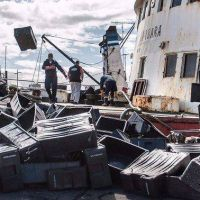La estiba de Mar del Plata activa protocolo para garantizar el trabajo en el Puerto