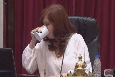 Coronavirus: diferencias en el Senado por el recorte de dietas y silencio de Cristina Kirchner