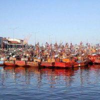 La pandemia redujo en un 30% la actividad de la pesca marplatense: las pymes piden ayuda para pagar sueldos