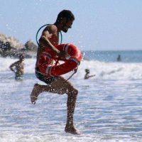 Cuál es el rol de los guardavidas en los varamientos de fauna marina