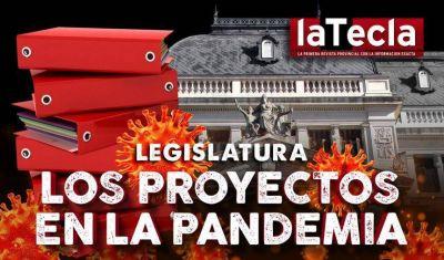 Legislatura: Los proyectos de la pandemia