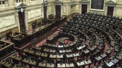 Las opciones que se barajan en Diputados para tener la primera sesión durante la pandemia