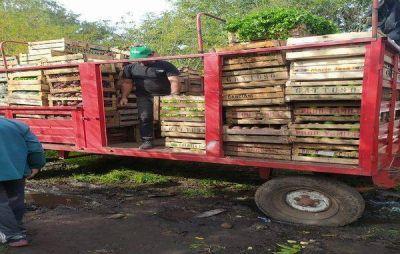 Donaron 10 mil kilos de verduras a los Comités Barriales de Emergencia