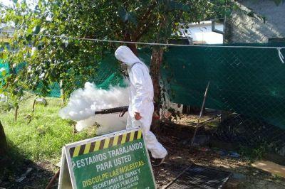 Merlo: Continúan las fumigaciones para combatir el dengue