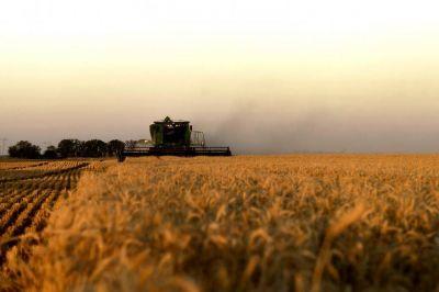 La provincia de Buenos Aires impulsa el aumento de las exportaciones de trigo a Brasil