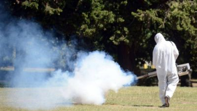 Dengue: ya son 143 los casos registrados en La Plata