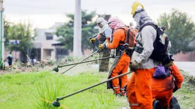 Más de 32.000 casos de dengue en Argentina y 24 muertes desde julio del año pasado