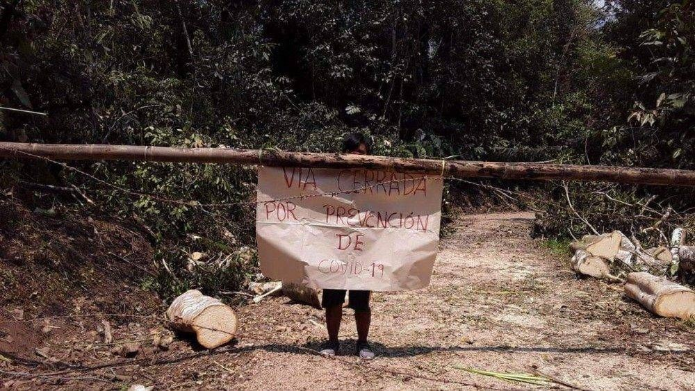 La REPAM llama a una acción urgente para evitar tragedia en la Amazonia