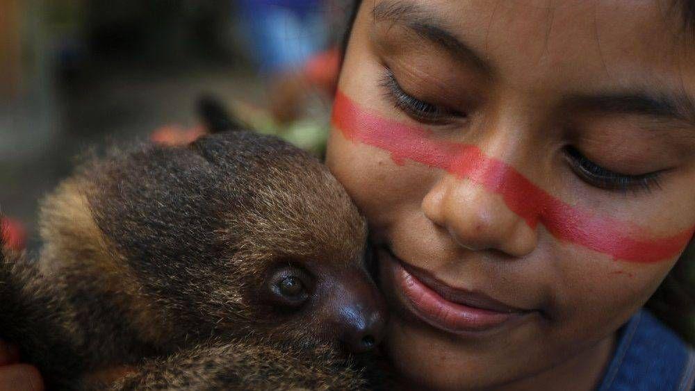 """Una guía de estudio para dialogar sobre """"Querida Amazonia"""""""