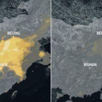 Un respiro para el planeta: la cuarentena global redujo emisiones de CO2 hasta un 17%
