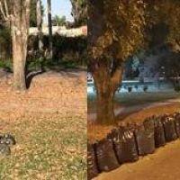 Queman bolsas con hojas y pasto en la plaza del barrio San Jacinto