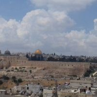 Israel y Palestina: La Santa Sede reafirma la solución de dos pueblos y dos Estados