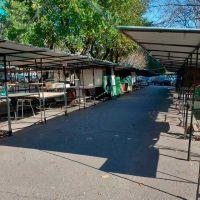 Artesanos de Mar del Plata, relegados, exigen ser incluídos para volver a la actividad
