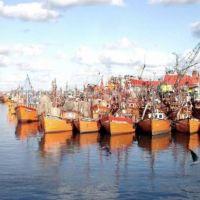 Pesca clandestina en pandemia hizo perder US$ 2.000 M en Mar del Plata