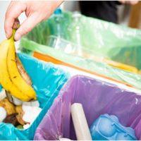 Instan a aprovechar el aislamiento para promover prácticas de separación de residuos