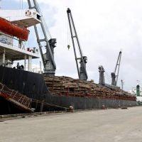 La AFIP habilitó a las pymes con deudas a postergar el pago de los Derechos de Exportación